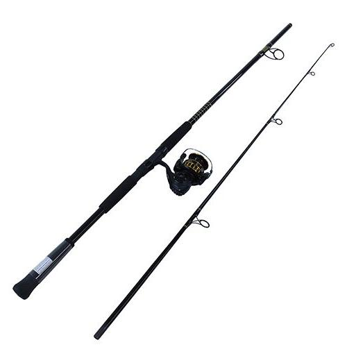 bg mounted saltwater spinning combo
